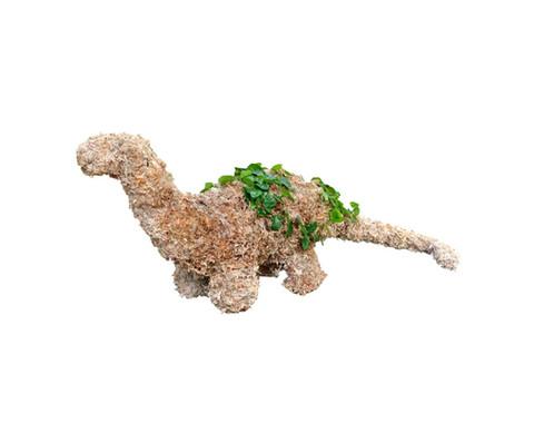 Dinosaur Brontosaurus Topiary - Planted | Noah\'s Ark Topiary