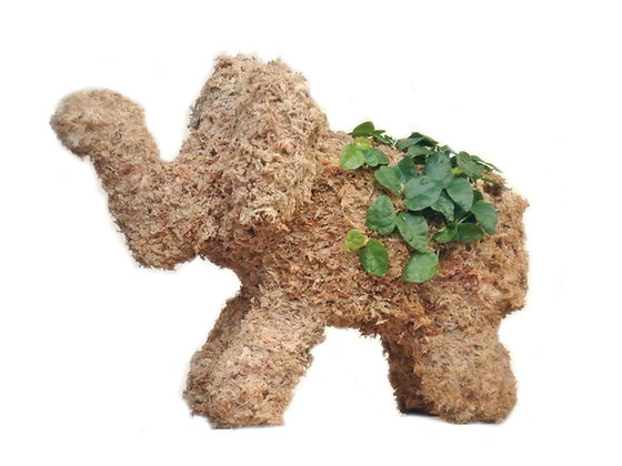 Small Elephant topiary planted; side view 01