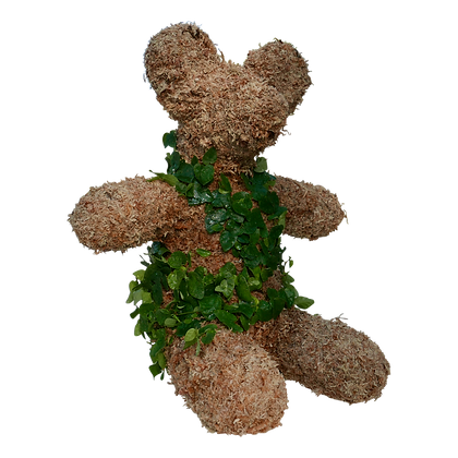 Planted Medium Teddy Bear Topiary Front View.
