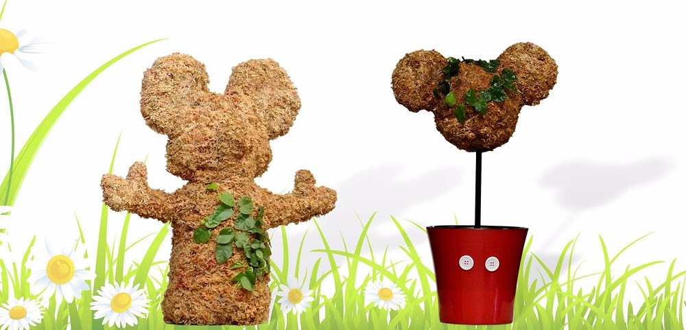 Spring - Celebrate with Topiaries