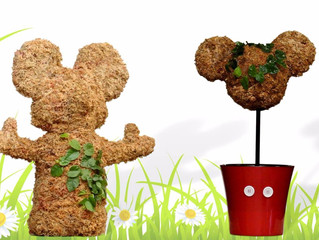 Spring is 18 days away. Celebrate with Topiaries!