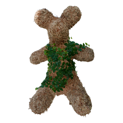 Planted Large Teddy Bear Topiary Front View.
