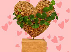 Small Heart Topiary - Planted