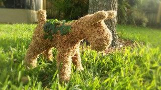 Schnauzer Topiary - Planted