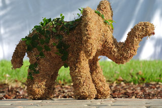 Large Elephant Planted Topiary