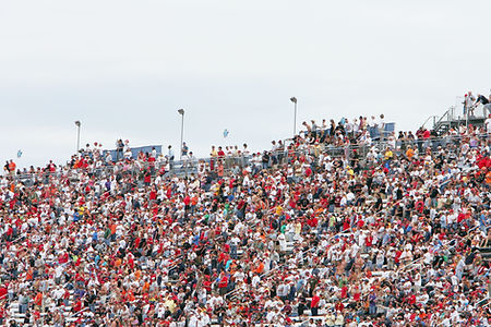 Crowd in Stands