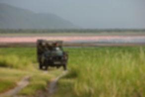 Mgeni Safaris_flamingo Lake Manyara.jpg