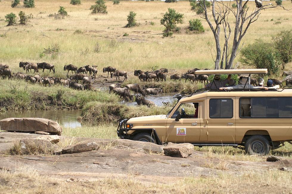Mgeni Safaris_Safarivoertuig Twiga Tours
