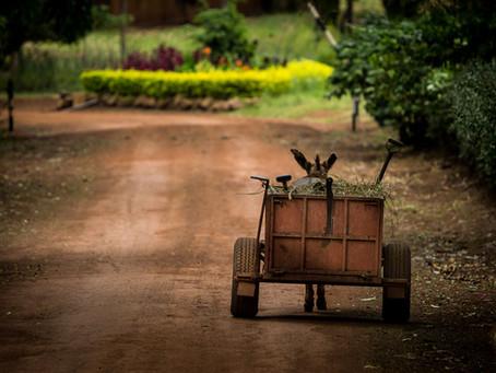 Bedrijvigheid in Oost-Afrika langs de weg en het water