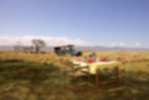 Mgeni Safaris_eten in de bush Kenia.jpeg
