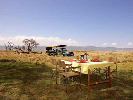 Een dag op safari met Mgeni Safaris in Oost-Afrika
