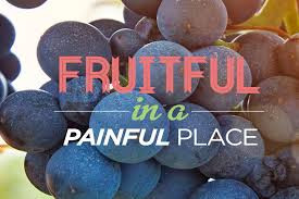 Fruitful in Affliction