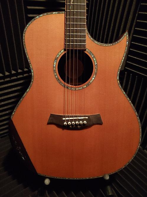 FGC Rosewood Acoustic Guitar
