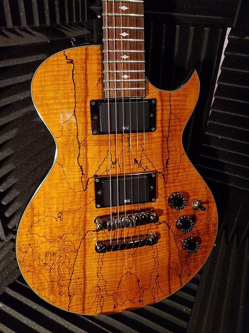 Ibanez Les Paul . Guitar