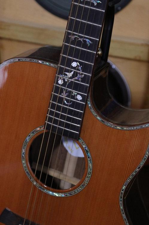 FGC acoustic/electric