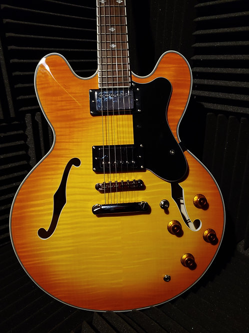 Xaviere Electric Guitar