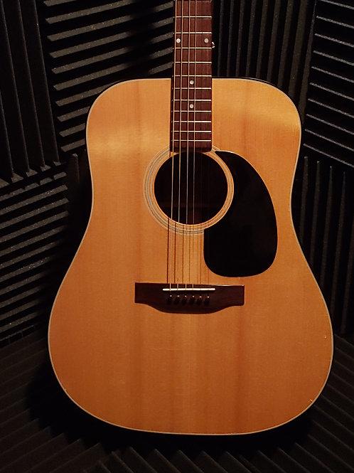 Arbor Acoustic Guitar