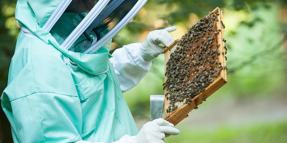 Bucks County Beekeepers Disease Day