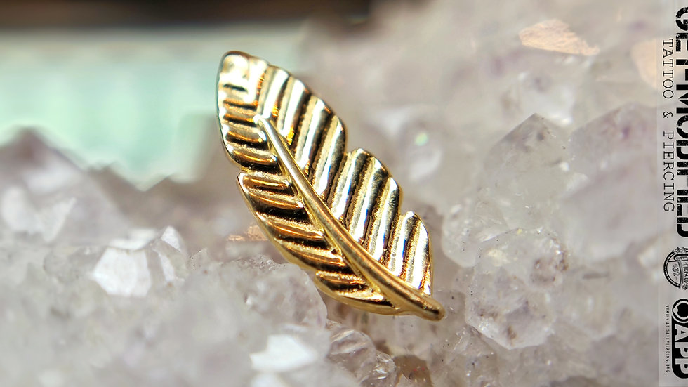 Tish Lyon Feather in 14ct Solid Gold