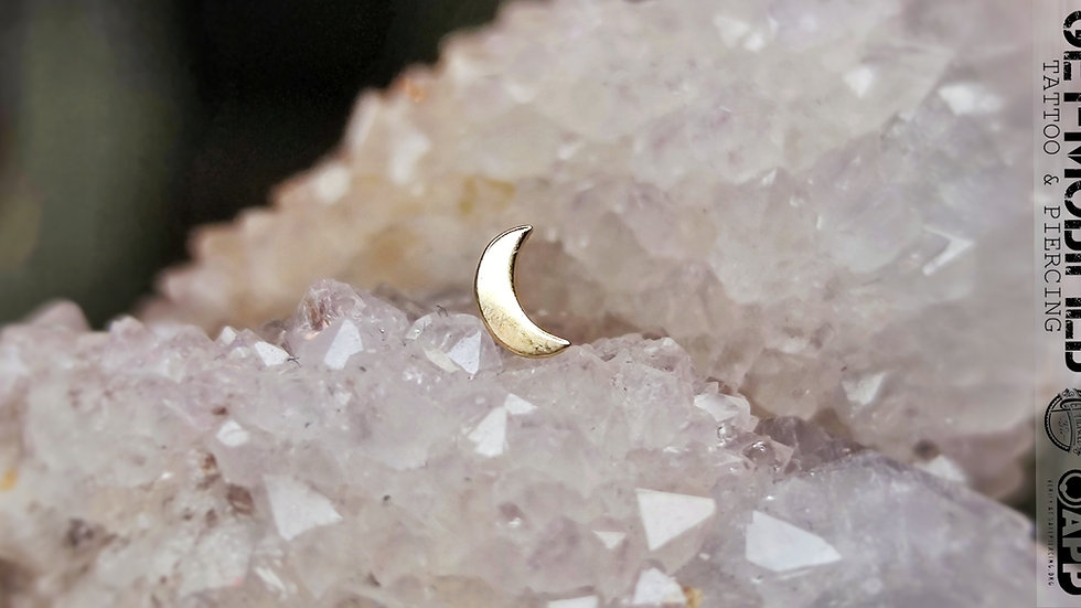 Tish Lyon Moon in 14ct Solid Gold