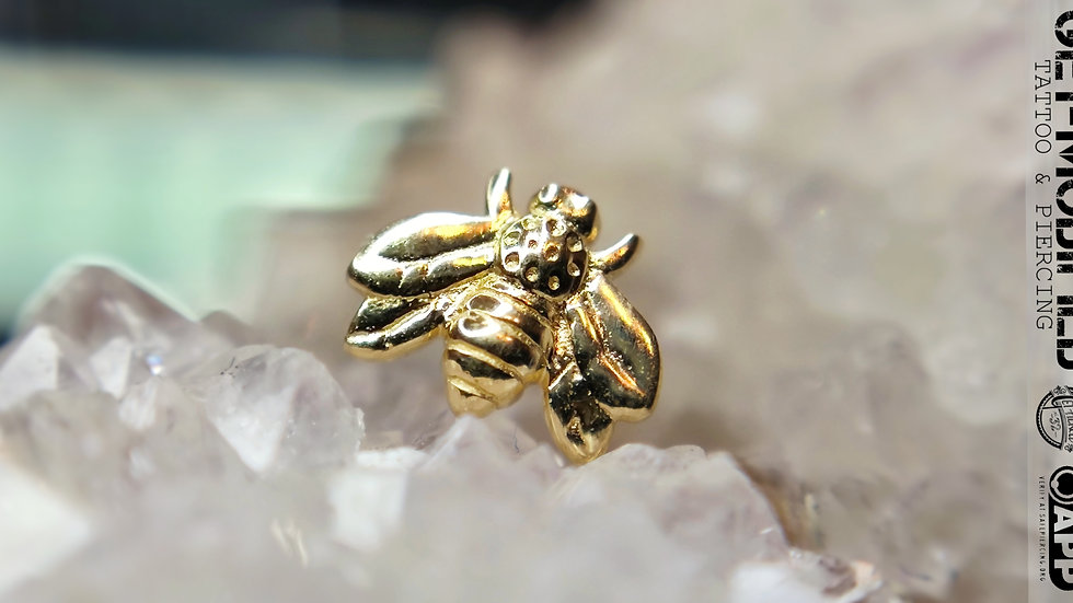 Tish Lyon Bee in 14ct Solid Gold