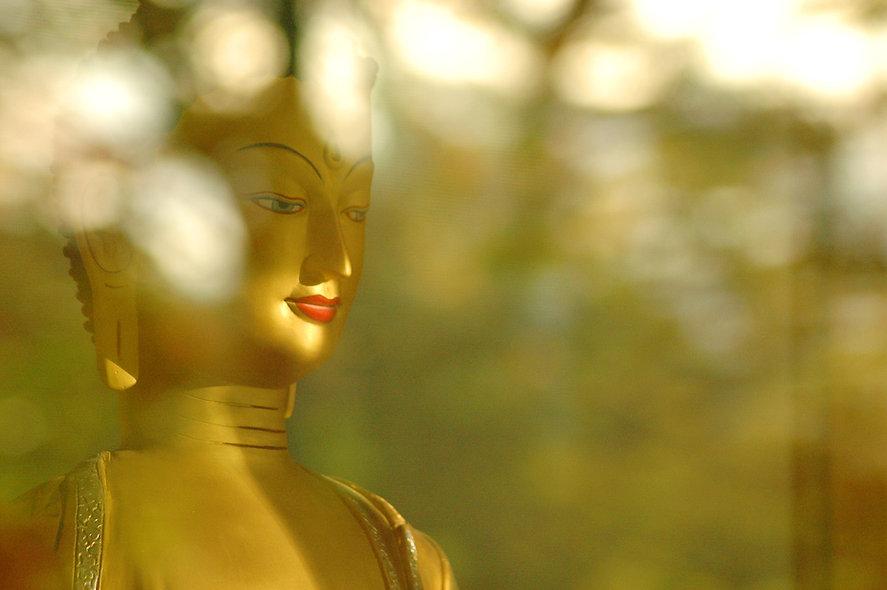 Buddha Shakyamuni With Light And Shadows