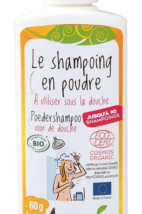 Shampoing en poudre (60gr)
