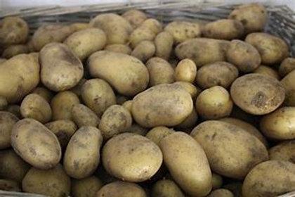 Pommes de terre nouvelle  charlotte(kg)