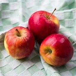 Pommes  ELSTAR de Jagny  kg
