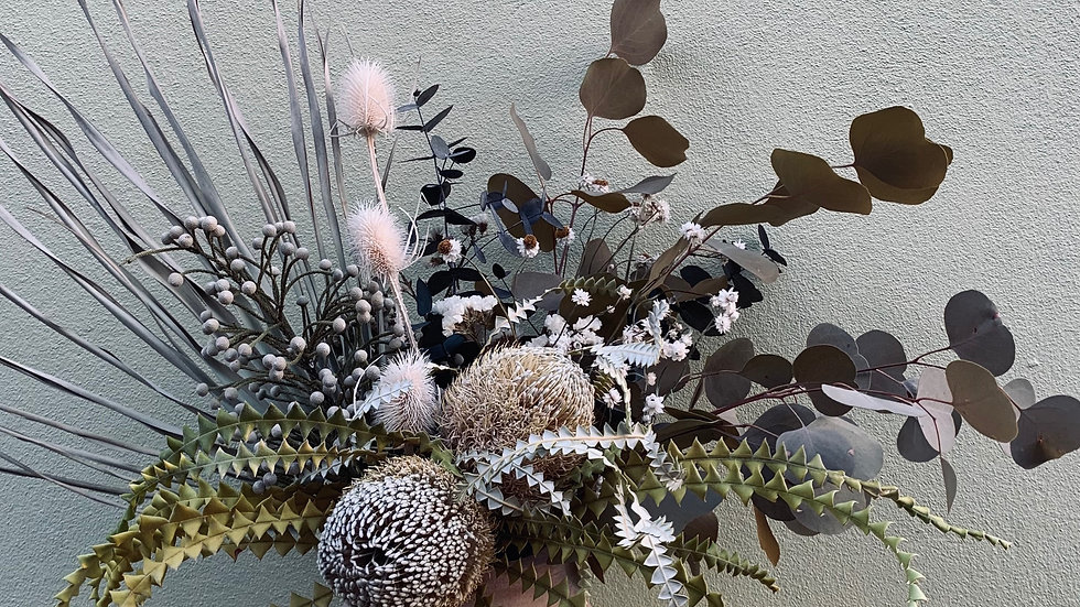 Everlasting with banksias in large pot