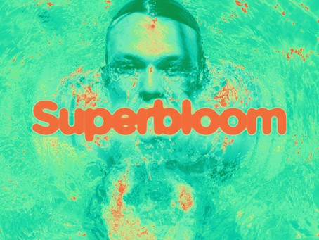 Superbloom- A Successful Solo Album