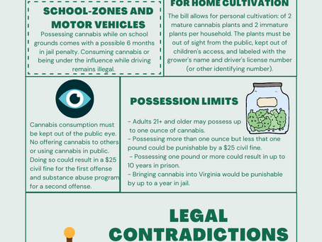 Virginia Legalization of Recreational Cannabis Law Explained