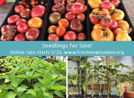 Full Season Plant Sale: Starts 5/23/2020