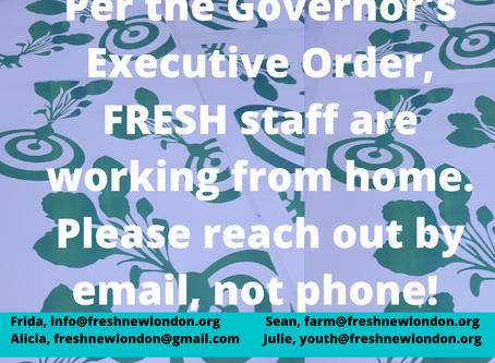 FRESH Staff Are Working Remotely