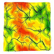 Bare Ground with Flow Accumulation.png