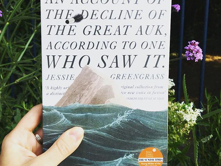 An Account of the Decline of the Great Auk, According to One Who Saw It by Jessie Greengrass