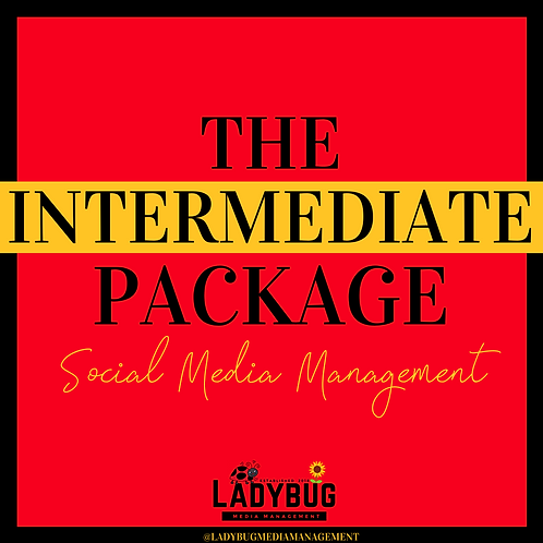 The Intermediate - Social Media