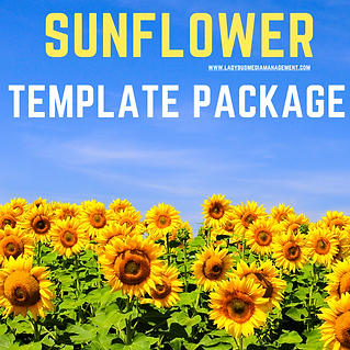 sunflower package web .png