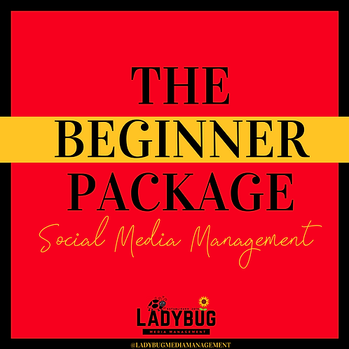 The Beginner - Social Media Management