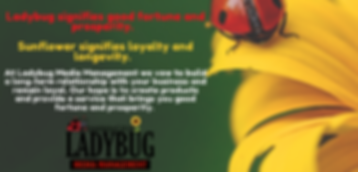 Ladybug Media Management.png