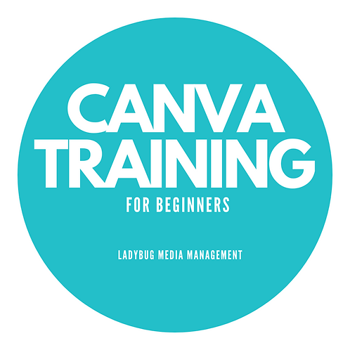 Canva Training for Beginners