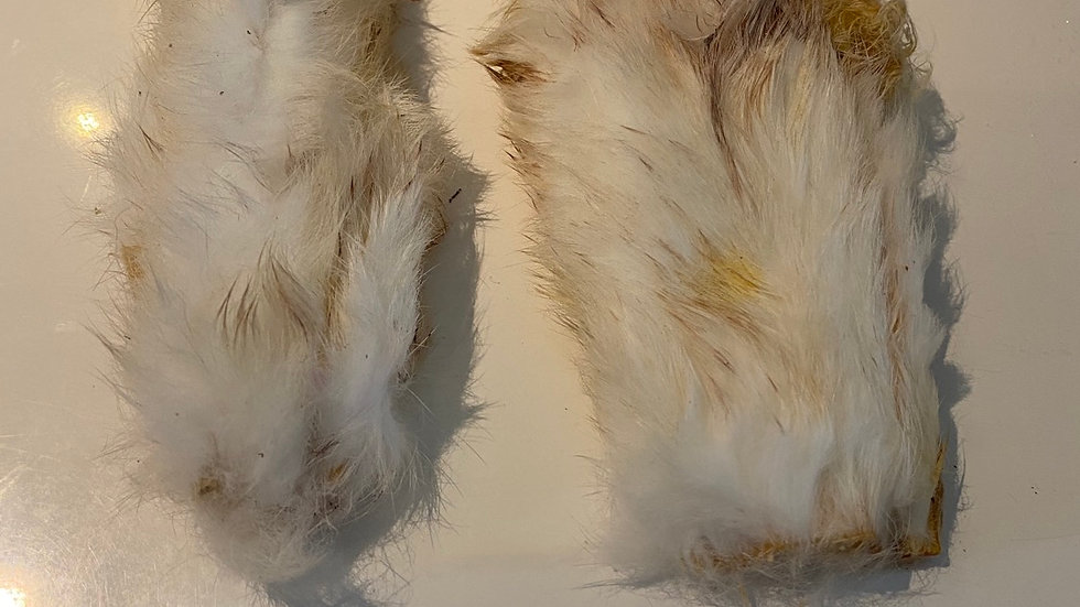 Rabbit Skin With Fur (1 Piece)
