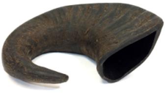 Buffalo Horn (large)