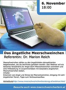 Webinar_Meerschweinchen_6.11.20.jpg