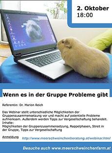 Webinar_Meerschweinchen_2.10.20.jpg