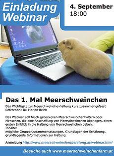 Webinar_Meerschweinchen_4.9.20.jpg
