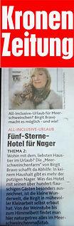 kronenzeitung 2_2020.jpg