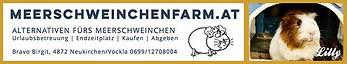 Banner_Meerschweinchenfarm.jpg