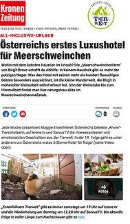 kronenzeitung_Bericht.jpg