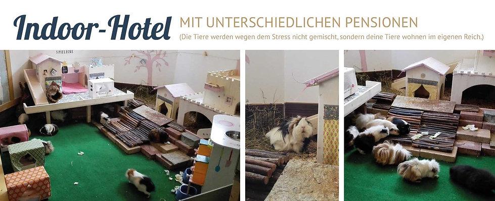 Indoorhotel_Meerschweinchenfarm.jpg